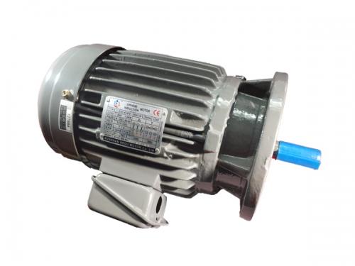 立式电机2HP