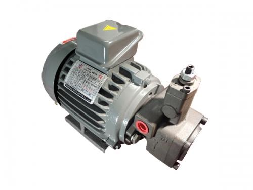 苏州油泵电机组+VP20